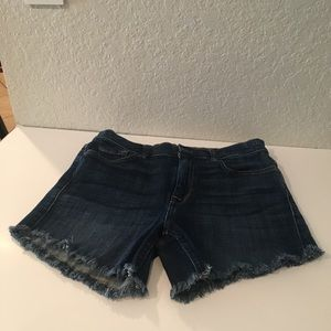 7 for all Mankind/Ginger Shorts